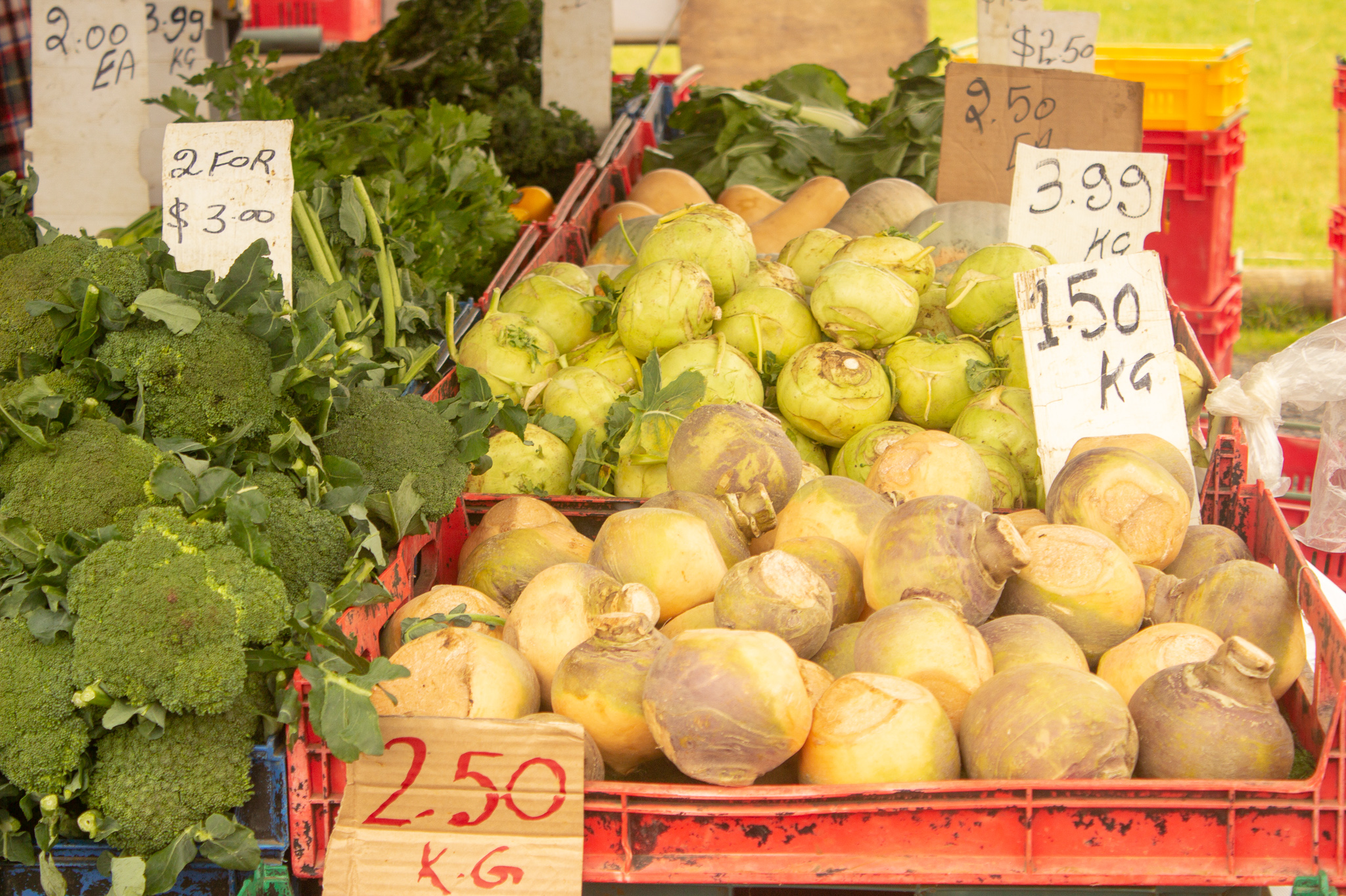 veges sold at the auckland eastern markets